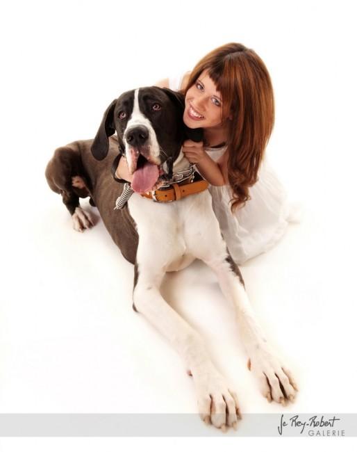 phographie de chiens