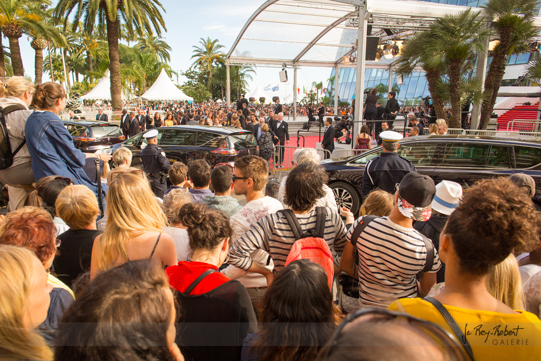 Cannes142